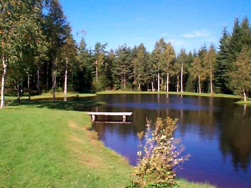 Umgebung von Ferienhaus No. 30344 in Vesterlanda