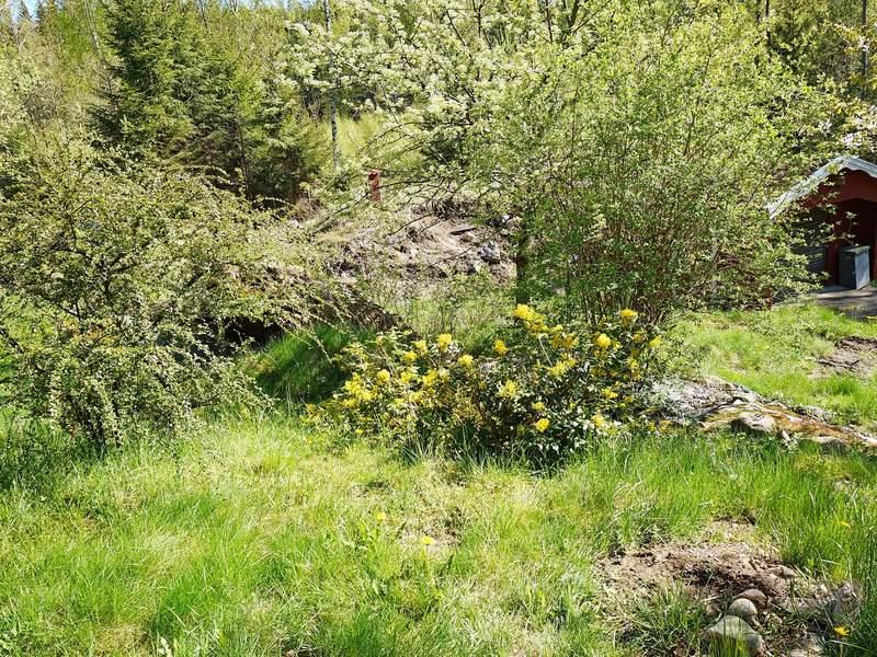 Umgebung von Ferienhaus No. 51669 in Svenshögen