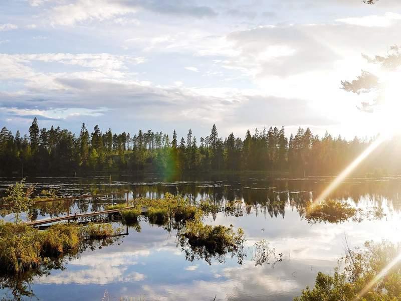 Umgebung von Ferienhaus No. 54562 in Hjortkvarn