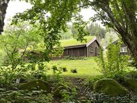 Ferienhaus No. 56779 in Ljung in Ljung - kleines Detailbild