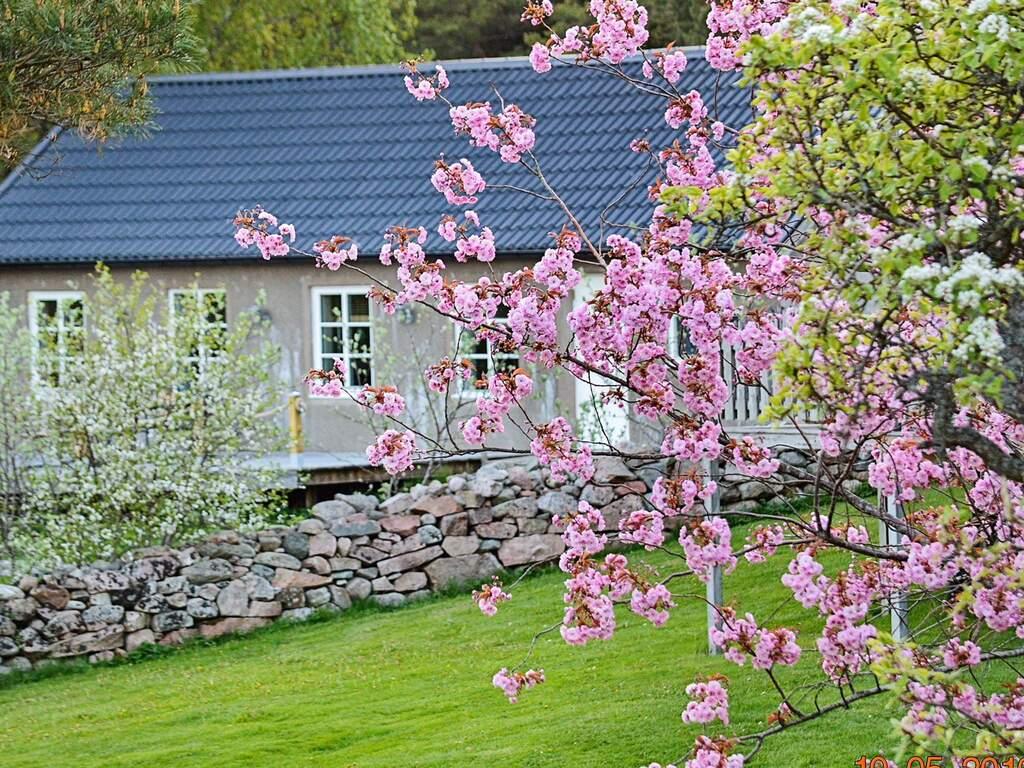 Zusatzbild Nr. 10 von Ferienhaus No. 60138 in Varekil
