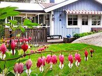 Ferienhaus No. 98742 in Hjälteby in Hjälteby - kleines Detailbild