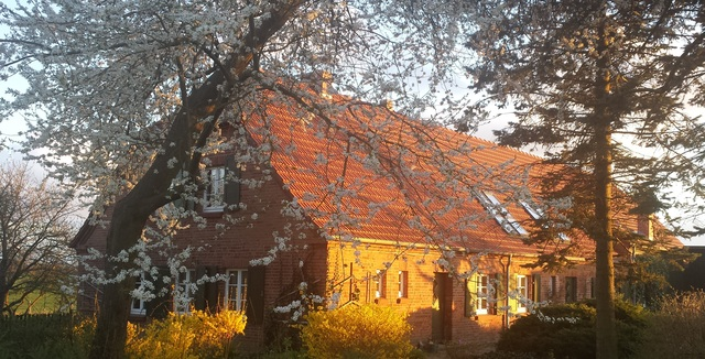 Seminar- und Landhaus Uckermark, Einzelzimmer Auen