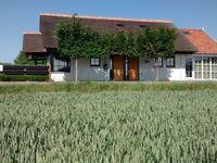 Ferienhaus Ringdijk Noord 5b in Cadzand - kleines Detailbild