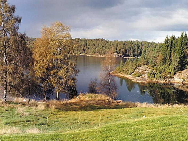 Umgebung von Ferienhaus No. 19885 in Vatnestrøm
