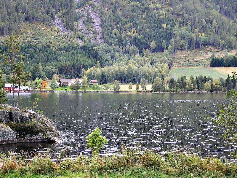 Umgebung von Ferienhaus No. 28304 in Vråliosen