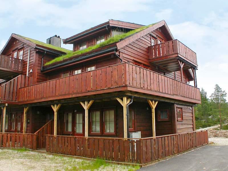 Detailbild von Ferienhaus No. 29680 in Åseral