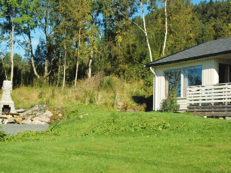 Zusatzbild Nr. 02 von Ferienhaus No. 29736 in Averøy