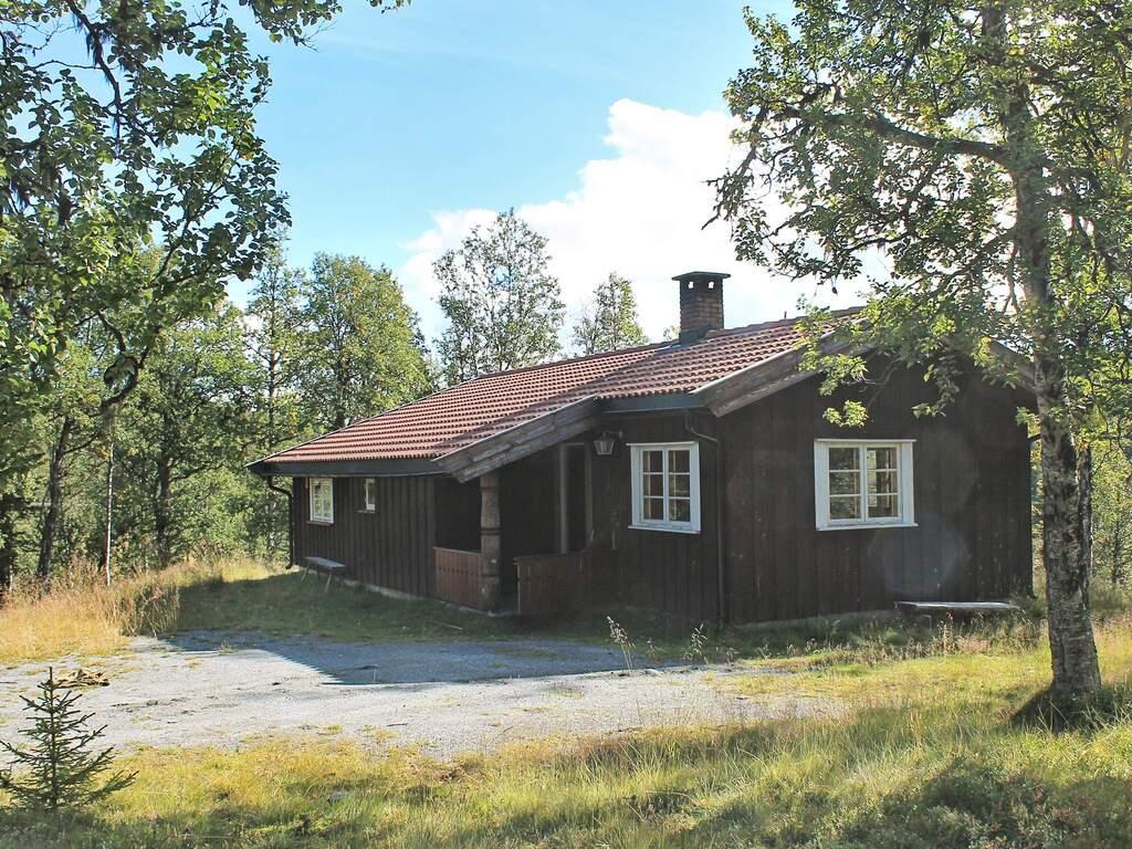 Zusatzbild Nr. 01 von Ferienhaus No. 30017 in Nesbyen