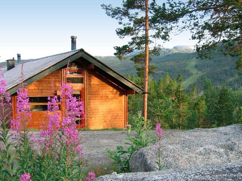 Detailbild von Ferienhaus No. 31726 in Hovet
