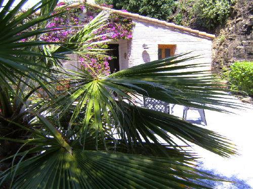 Die Casa Ranita im tropischen Garten