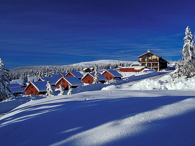 Zusatzbild Nr. 01 von Ferienhaus No. 38597 in Lillehammer