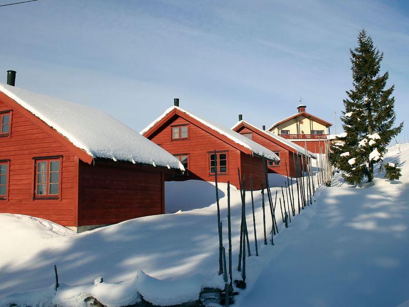 Umgebung von Ferienhaus No. 38599 in Lillehammer