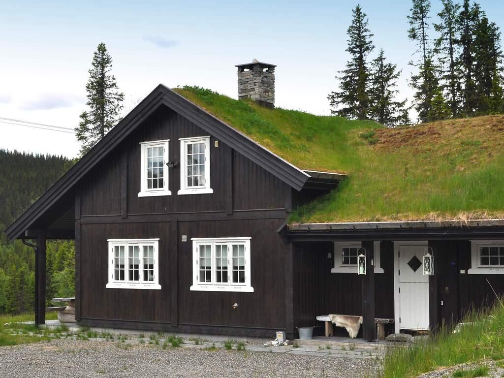Detailbild von Ferienhaus No. 43196 in Fåvang