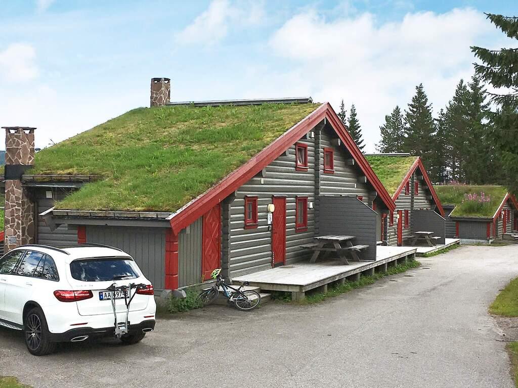 Detailbild von Ferienhaus No. 43243 in Trysil