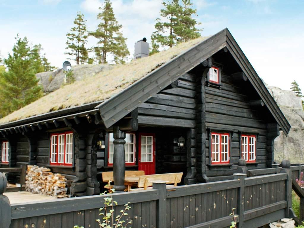 Detailbild von Ferienhaus No. 43303 in Åseral