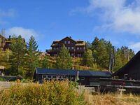 Ferienhaus No. 43356 in Åseral in Åseral - kleines Detailbild
