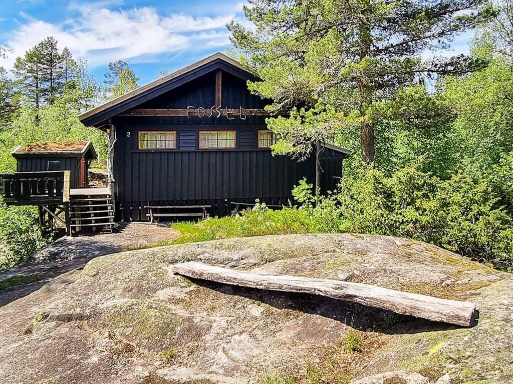 Detailbild von Ferienhaus No. 53106 in Åseral