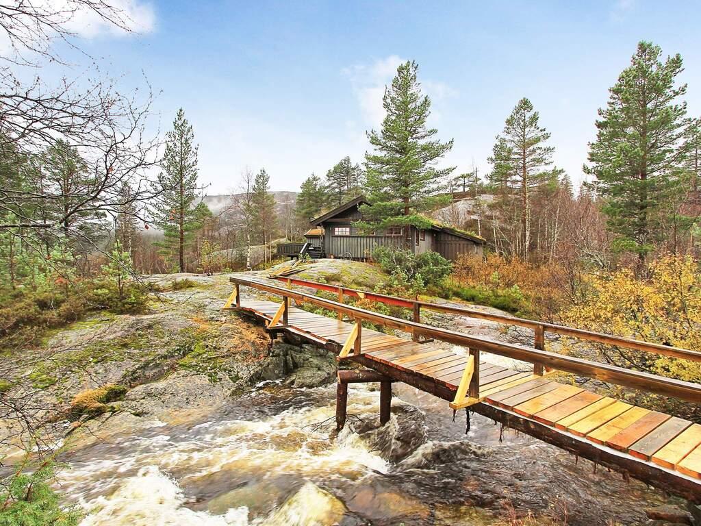 Umgebung von Ferienhaus No. 53106 in Åseral