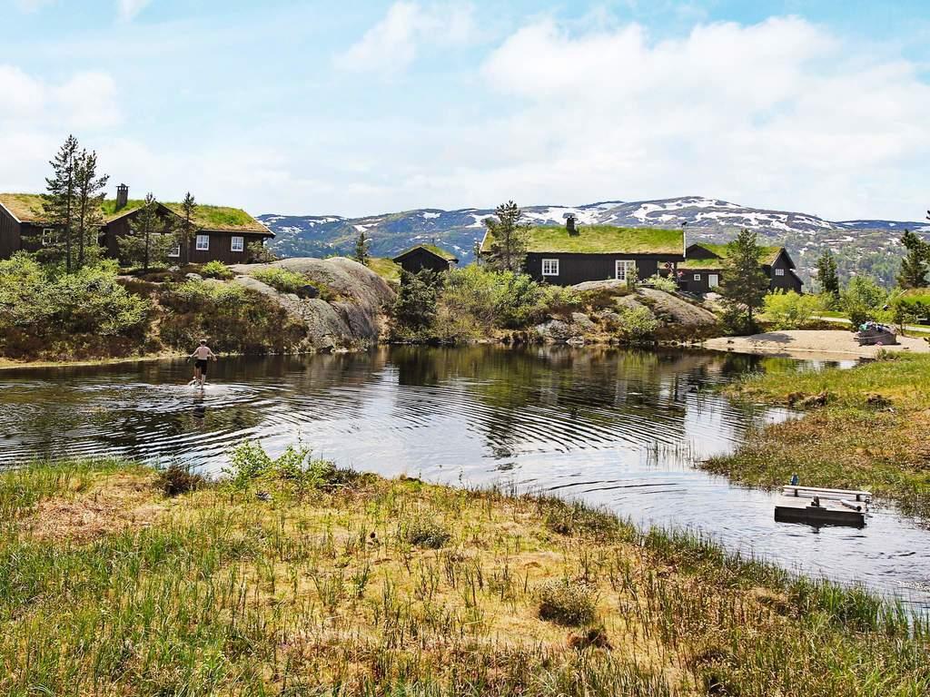 Umgebung von Ferienhaus No. 53110 in Åseral