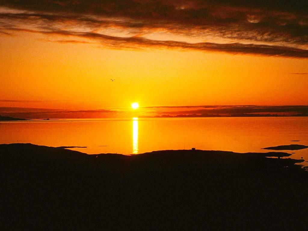 Umgebung von Ferienhaus No. 55780 in Laukvik