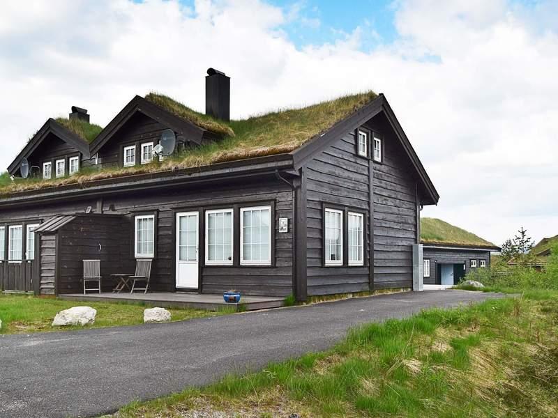 Detailbild von Ferienhaus No. 94168 in Åseral