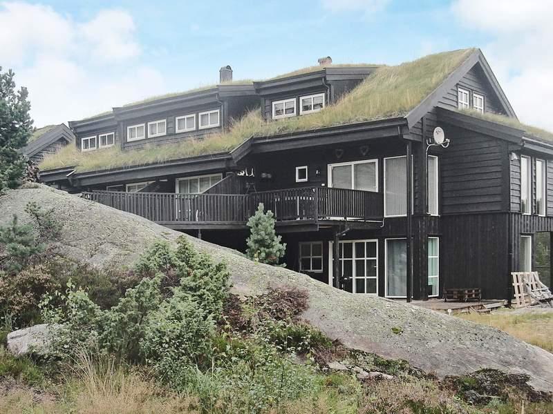 Detailbild von Ferienhaus No. 94172 in Åseral