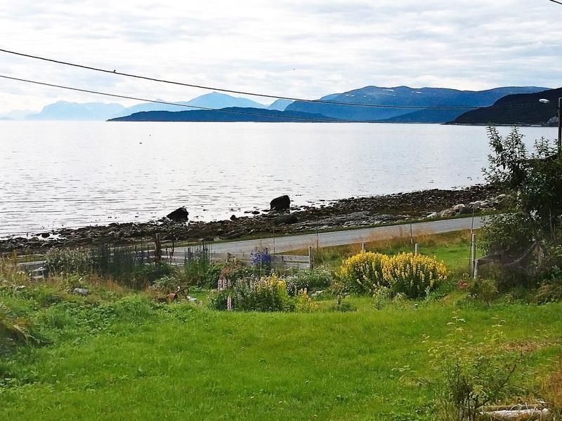 Umgebung von Ferienhaus No. 95386 in Vannvåg
