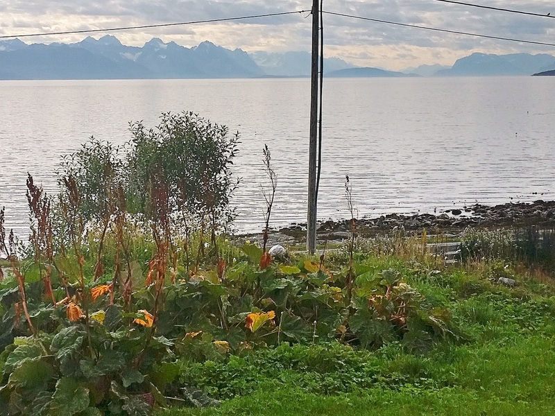 Zusatzbild Nr. 06 von Ferienhaus No. 95386 in Vannvåg