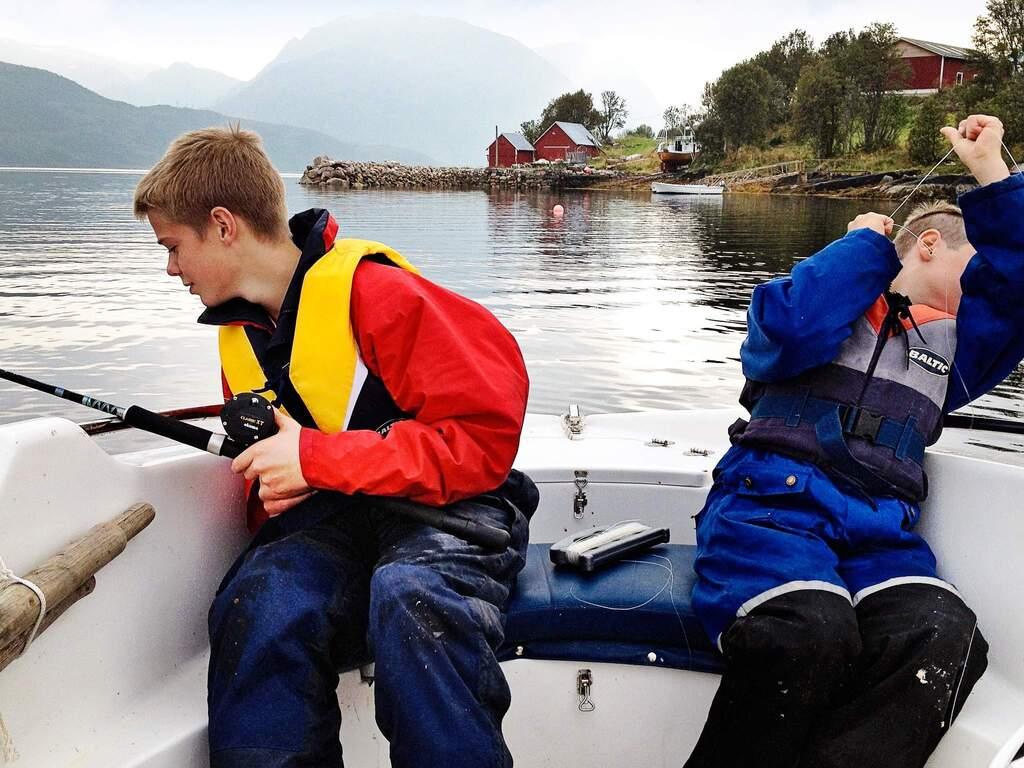 Zusatzbild Nr. 02 von Ferienhaus No. 96096 in Gullesfjord