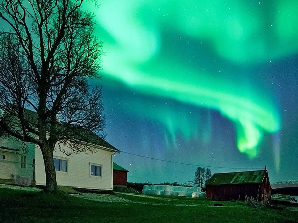 Zusatzbild Nr. 01 von Ferienhaus No. 97476 in Kvaløya