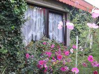 Ferienwohnung  Mirow (Dreker), Ferienwohnung Mirow in Mirow - kleines Detailbild