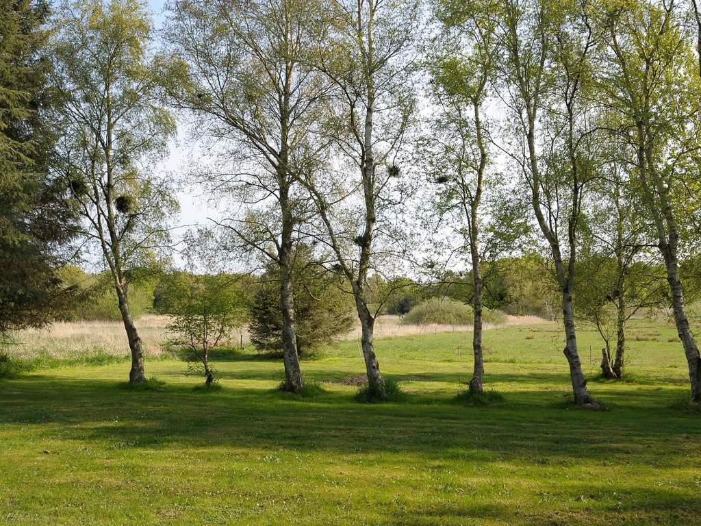 Umgebung von Ferienhaus No. 31862 in Glesborg