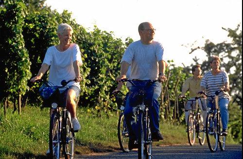 Radtour in den Weinreben