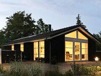 Ferienhaus in Løgstør, Haus Nr. 40341 in Løgstør - kleines Detailbild