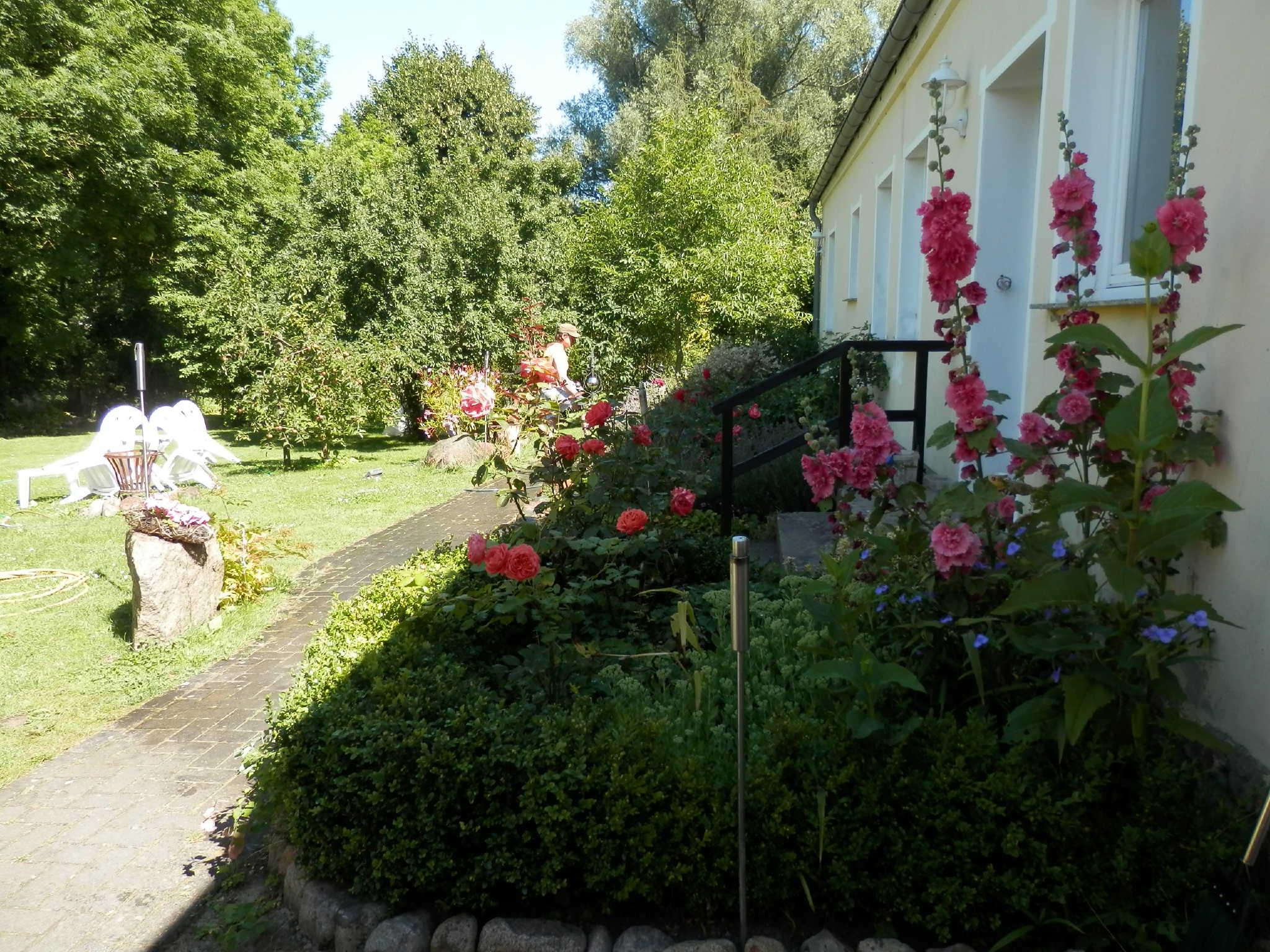 Blick vom Garten auf die Wohnung