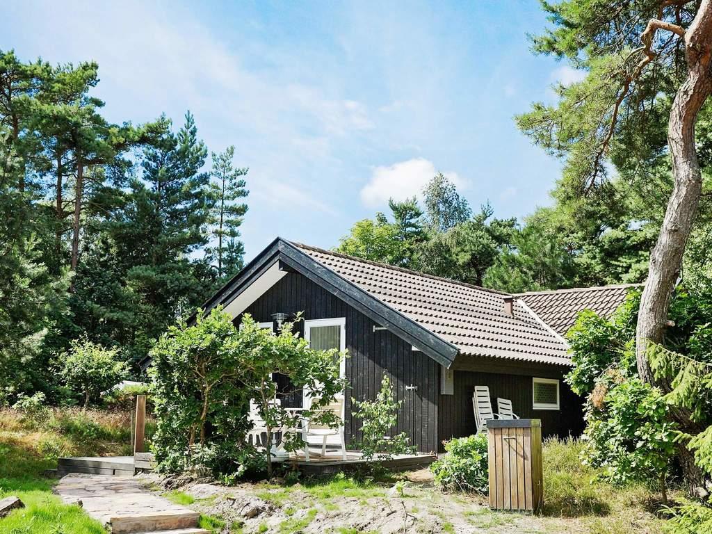 Zusatzbild Nr. 03 von Ferienhaus No. 55602 in Nexø