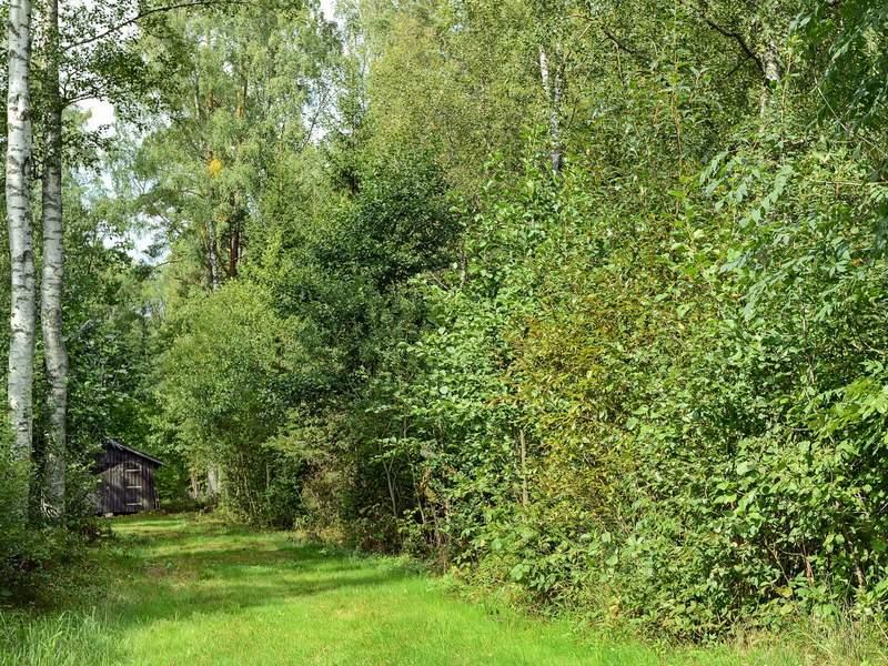Zusatzbild Nr. 05 von Ferienhaus No. 61764 in Tvärred