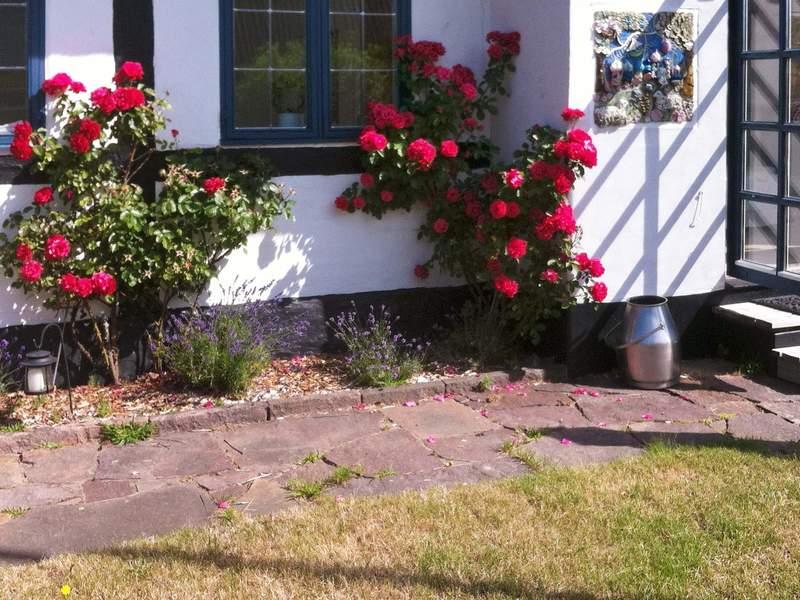 Zusatzbild Nr. 02 von Ferienhaus No. 61838 in Nex�