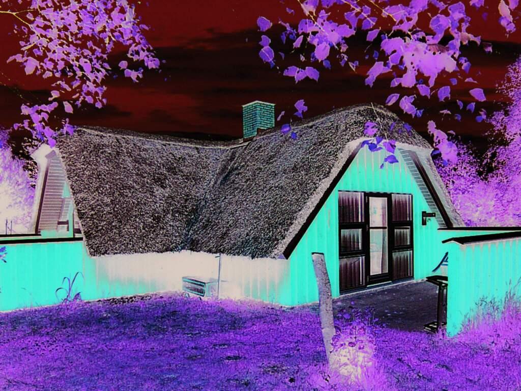 Detailbild von Ferienhaus No. 80496 in Nørre Nebel