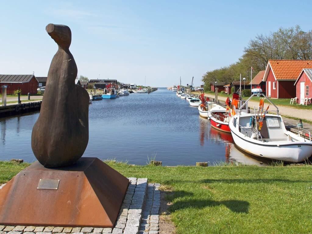 Zusatzbild Nr. 14 von Ferienhaus No. 87664 in Skjern