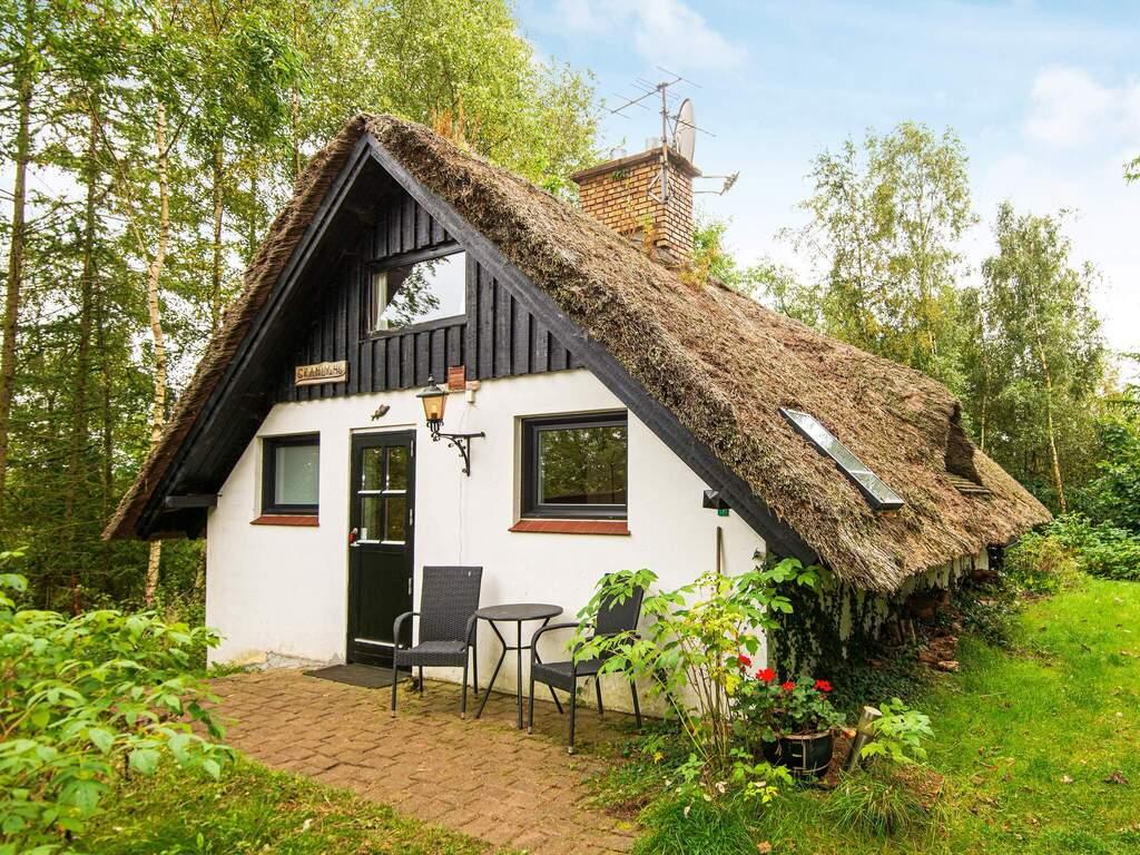 Detailbild von Ferienhaus No. 91334 in Ejstrupholm