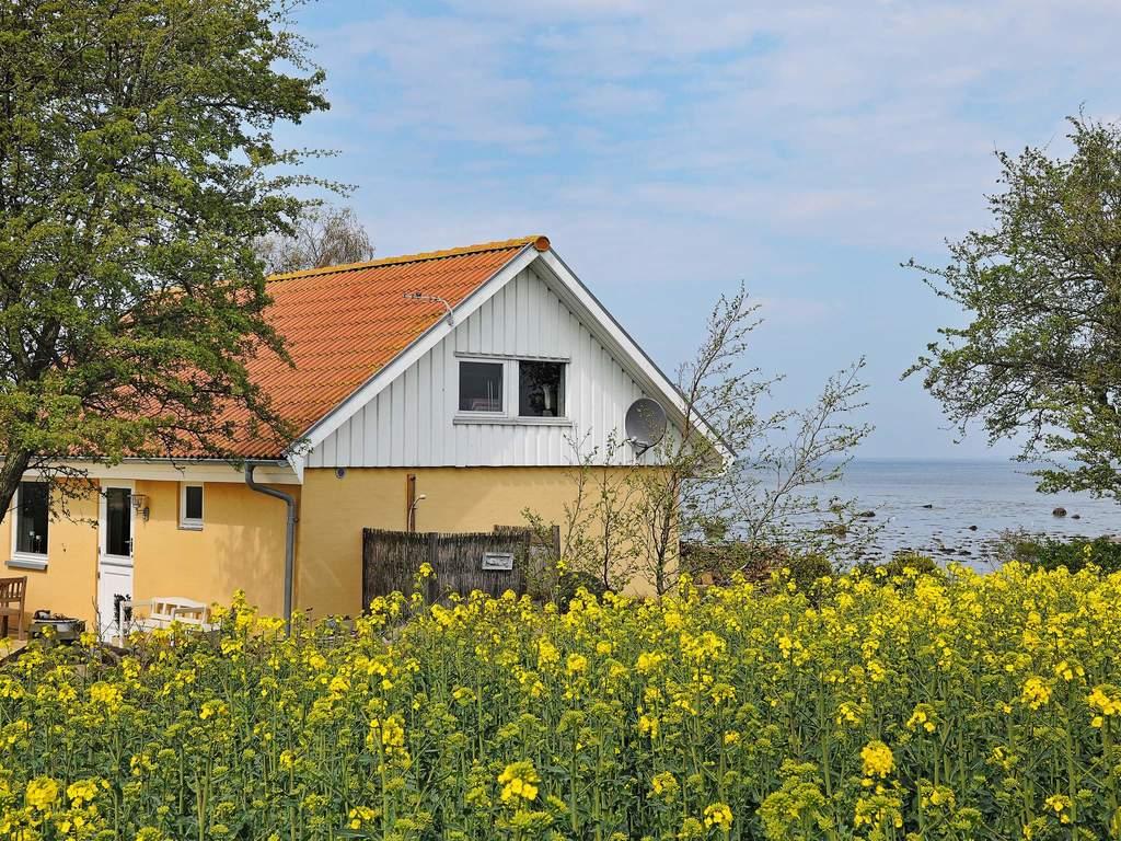 Zusatzbild Nr. 02 von Ferienhaus No. 92494 in Mesinge