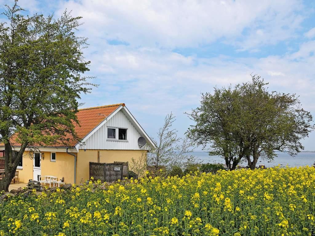 Zusatzbild Nr. 04 von Ferienhaus No. 92494 in Mesinge