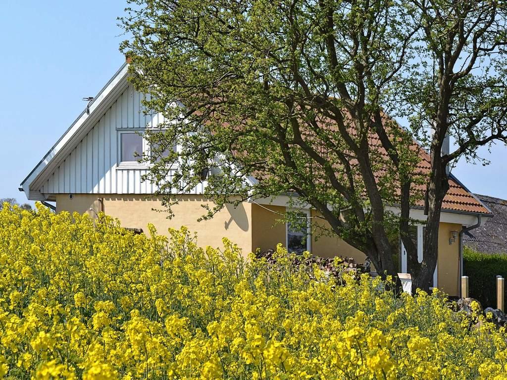 Zusatzbild Nr. 06 von Ferienhaus No. 92494 in Mesinge