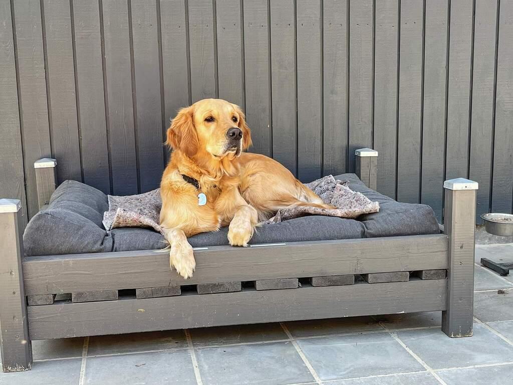 Zusatzbild Nr. 06 von Ferienhaus No. 95383 in Skals