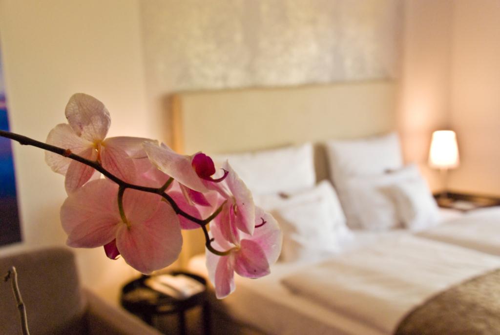 Hotel Seezeichen GmbH, Künstlerquartier - Comfort