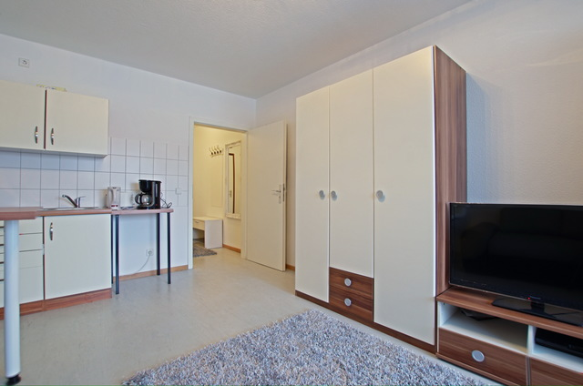 1 Zimmer Apartment | ID 1491, apartment