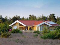 Ferienhaus No. 36073 in Skjern in Skjern - kleines Detailbild