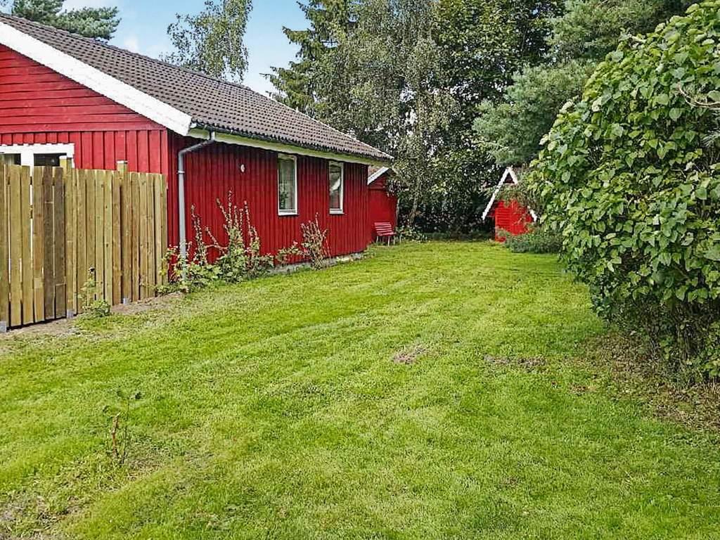 Zusatzbild Nr. 05 von Ferienhaus No. 36217 in Rødby
